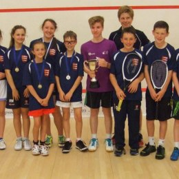 harrow cup champions - essex
